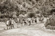 A Group Of Learners Being Led Through Kirstenbosch Gardens Before Hiking To The Contour Path.